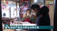 线上线下一体化监督 江苏省严查非法野生动物交易