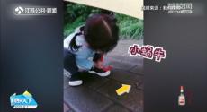 """网友:萌化了!4岁萌娃雨天为小蜗牛打伞送其""""回家"""""""
