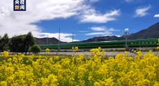 绿巨人高原飞驰丨100秒第一视角看西藏拉林铁路沿途美景