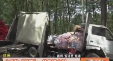 """徐州 小动物""""拦路""""货车撞大树"""